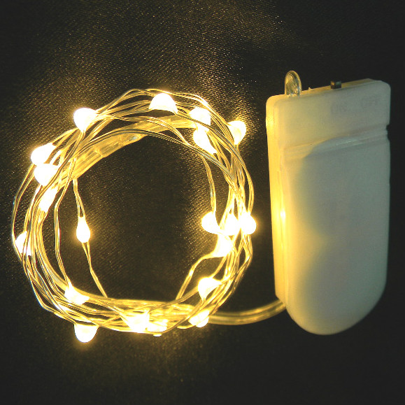 10 Twinkle Light LEDs on Silver Wire
