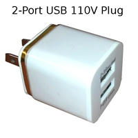 110V Wall Plug with 2 USB Ports