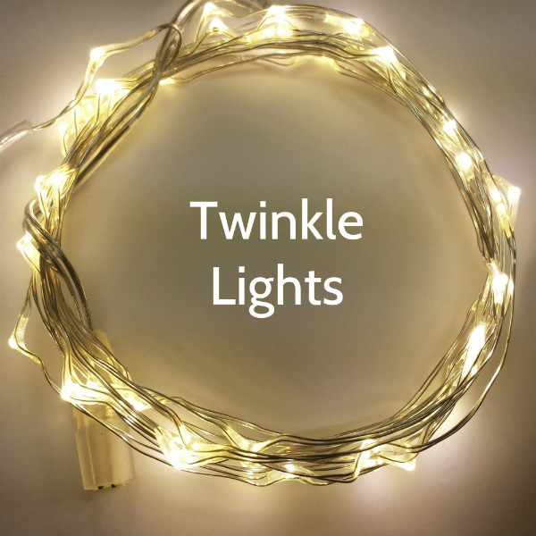 50 Warm White Twinkle Fairy Lights on 16 Foot Silver Wire