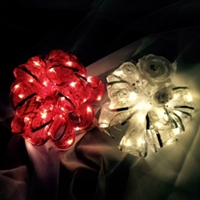 9 to 27 Foot Ribbon with 50 Fairy Light LEDs